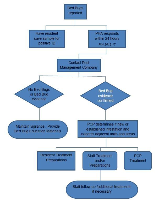 Bedbug Action Plan Flowchart
